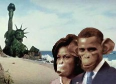 "Is It ""Racist"" to Think Blacks Look Like Primates??? http://www.renegadetribune.com/racist-think-blacks-look-like-primates/"