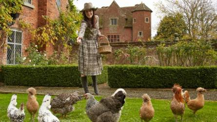 methodetimesprodwebbin56f7d9e8-c63a-11e7-9914-a38dcc178fcd Lady Laura Cash with her boutique breed chickens
