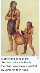 John White Drawing of Native woman