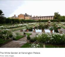 Kenington Pallace white flower garden