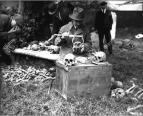 Pyecroft looking for Pocahontas bones