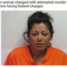 Red Fawn.2