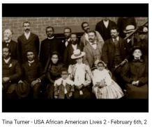 Tina Turner 33% White DNA.2