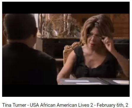 Tina Turner 33% White DNA